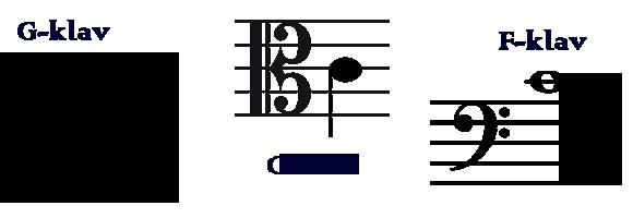 Stråksektionen - nyckelshåls-c, olika notrader